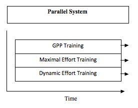 ParallelSystem